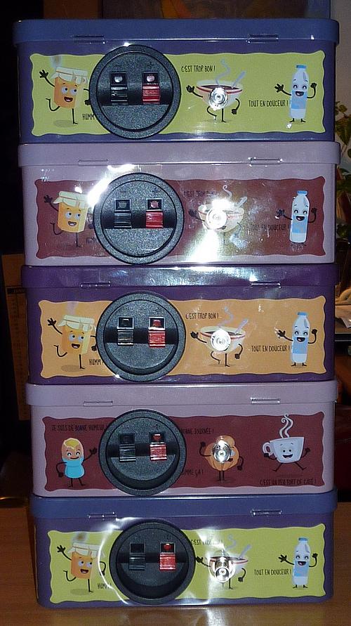 Les 5 kits installés dans des boites à sucre. Face arrière avec une prise BNC pour un dipole et en parallèle, un socle d'enceintes BF qui sert de prise antenne filaire et terre...